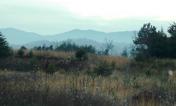 North Ga. Mountains by Regina McLeroy