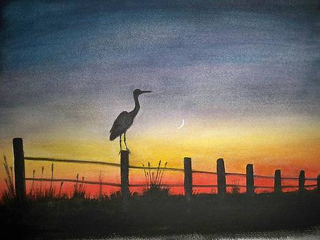 On the fence by Tammy McClung