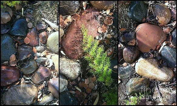 Marlene Burns - on the rocks