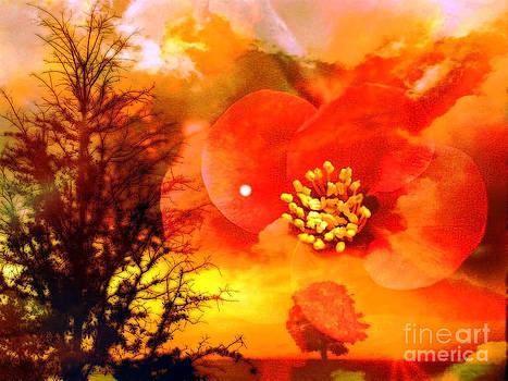Orange Nature by Zsuzsa Lado