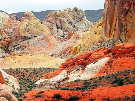 Frank Wilson - Painted Desert