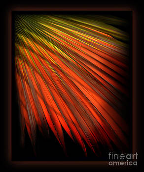 Palm Sunday by Shevon Johnson