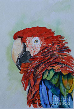 Parrot by Betty Mulligan