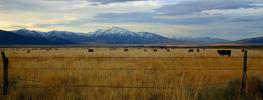 Peace in the Valley by Laurie Penrod