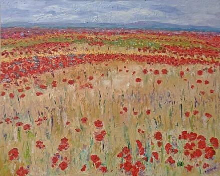 Provence Poppies by Barbara Anna Knauf