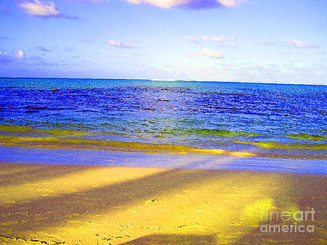 Punta Cana Sunset by Zsuzsa Lado
