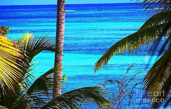 Punta Cana's water by Zsuzsa Lado