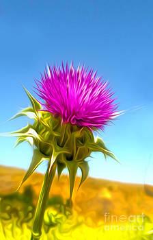 Gregory Dyer - Purple Flower