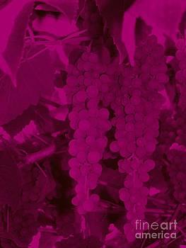 Purple by Susan Saver