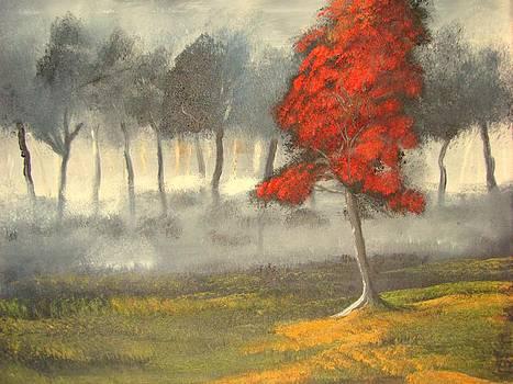 Red blossom tree by John Morris