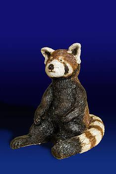 Jeanette K - Red Panda