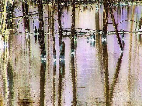 Reflections by Katina Cote