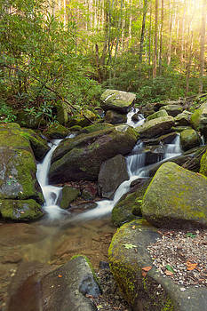 Roaring Forks by Cindy Haggerty