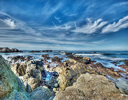 Rugged California Coastline by Kay Price