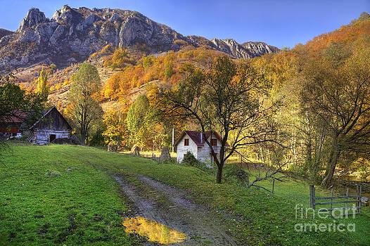 Rural autumn landscape by Radu Razvan