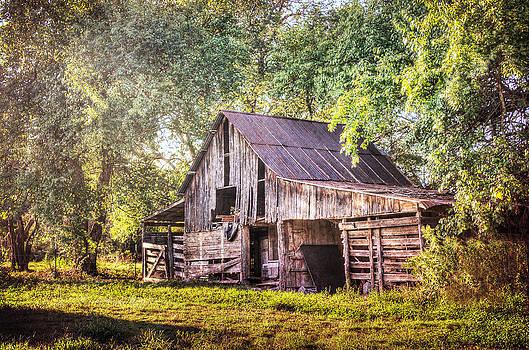 Rustic Barn by Lisa Moore