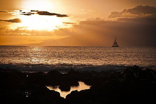 Sail In The Sun by Terry Hollensworth-Rutledge