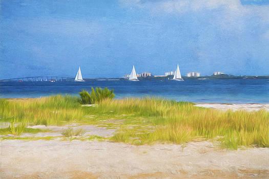 Kim Hojnacki - Sailing the Ocean Blue