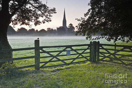 Salisbury cathedral at dawn. by Julian Elliott