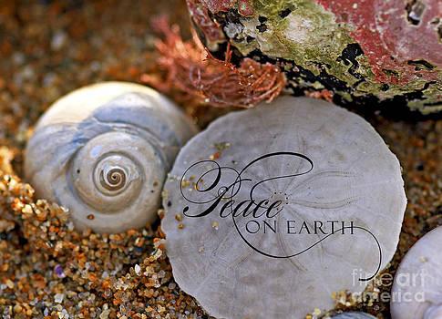 Brenda Giasson - Sand Dollar Peace