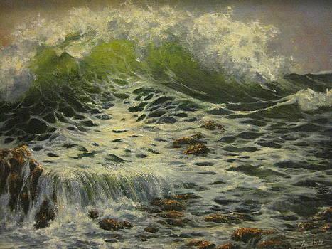 Sea Splash by Carol Bitz