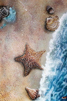 Seashore Serenity by Bill Yurcich