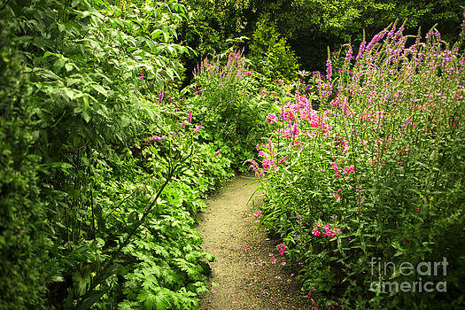 Secret garden  by Gry Thunes