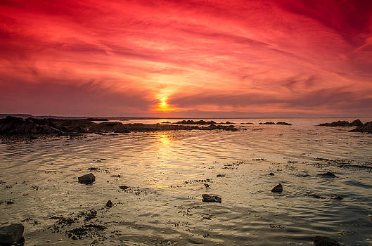 Martina Fagan - Skerries Shoreline