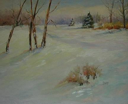 Snow Shadows by Patricia Seitz