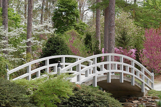 Spring's Bridge by Heather Lee