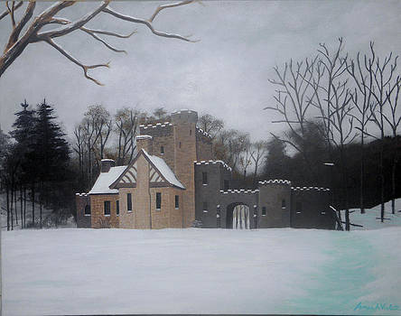 Squires Castle by James Violett II