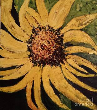 Sunflower by Sherry Harradence