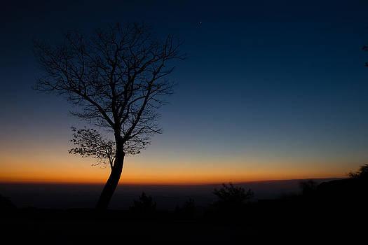 Sunrise Silhouette  by Kaye Seaboch