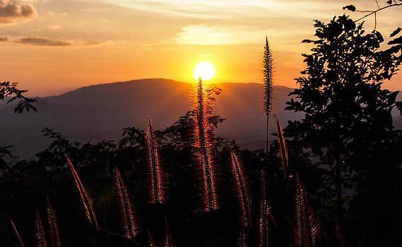 Sunset by Atichart Wongubon