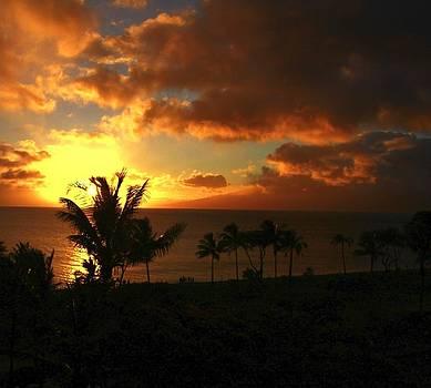 Sunset on Maui by Max  Greene