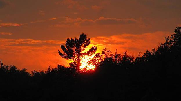 Fiery Sunset by Jaunine Roberts