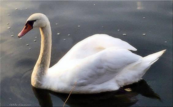 Swan by Mikki Cucuzzo