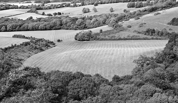 Steven Poulton - The Hampshire Downs