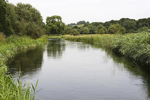 Steven Poulton - The South Downs water meadows