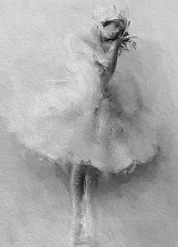 Stefan Kuhn - The Swan