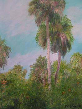 THIS is Florida by Patty Weeks