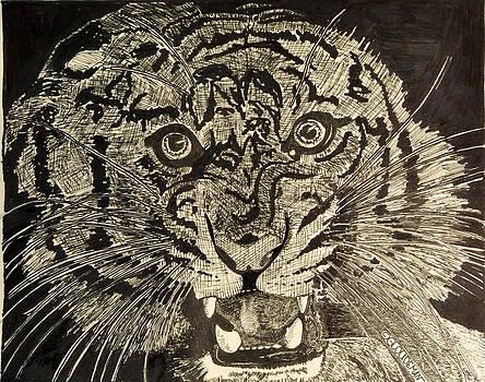 Tiger by Denis Gloudeman