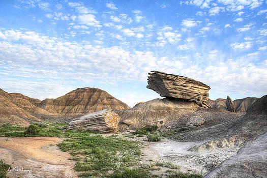 Toadstool Park - Nebraska badlands by Andrea Kelley
