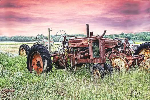 Tractor Graveyard by Bonnie Willis