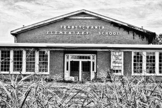 Scott Pellegrin - Transylvania Elementary