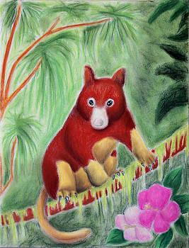 Jeanette K - Tree Kangaroo