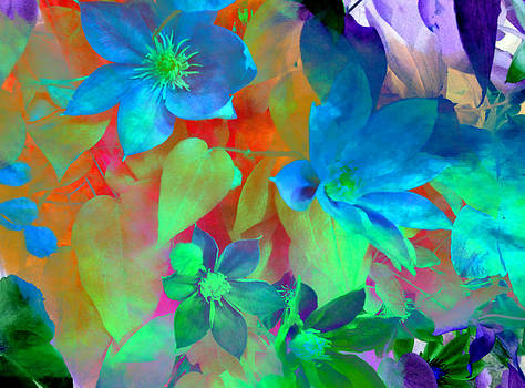 Tropical Blue by Louise Grant