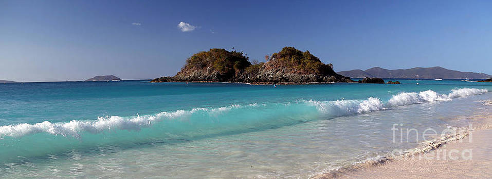 Clearly Trunk Bay by Betty Morgan