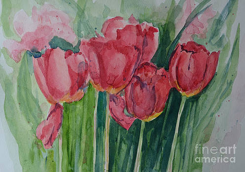 Tulips by Betty Mulligan
