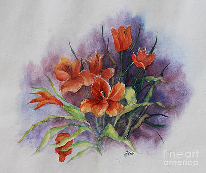 Janet Felts - Tulips